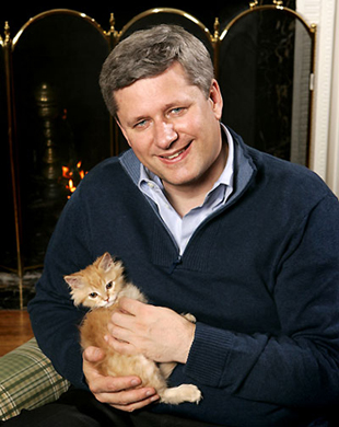 The new soft fuzzy Stephen Harper and cat. Note that the cat's severed head is just resting on the body.