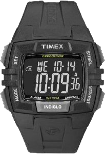 Timex Expedition T49900GP