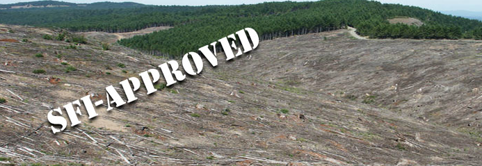 SFI Sustainable Forestry Initiative really means Selling False Information