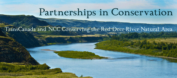 Visit the Nature Conservancy of Canada